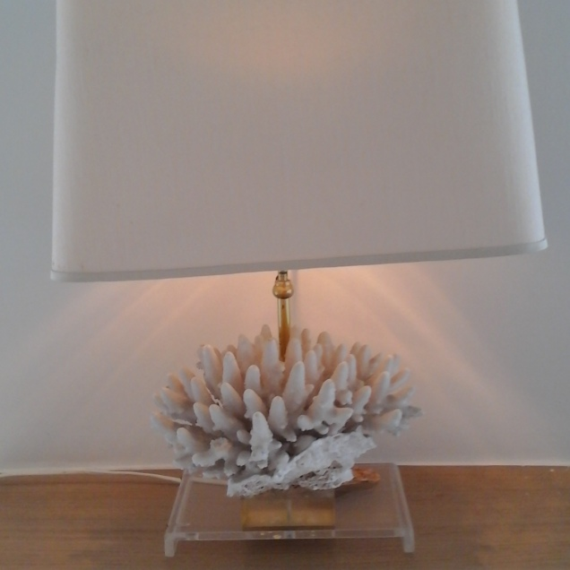 Lamp on coral!