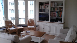 Living room with television, cable TV, DVD / Blue Ray, radio / CD player and library